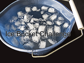 blue bucket filled with water and ice -  Ice Bucket Challenge