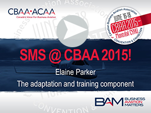 Elaine Parker - SMS at  CBAA 2015 - the adaptation and training component
